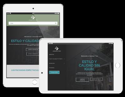 Web Development Services Company